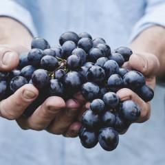 Przybywa biokonsumentów. Moda na zdrową żywność nie mija